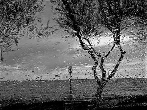 2013043072455-pioggia-2