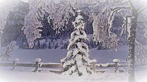 natale-con-la-neve-3bmeteo-76003